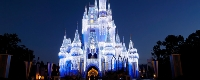 walt disney world resorts - 40% savings
